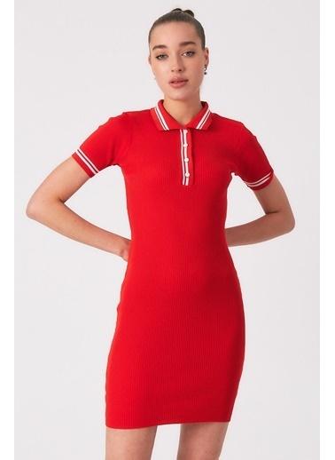 Robin Düğmeli Polo Yaka Triko Elbise Kırmızı Kırmızı